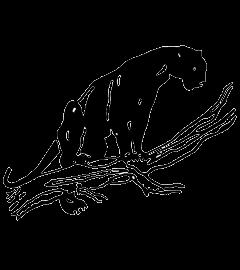 West Salem logo